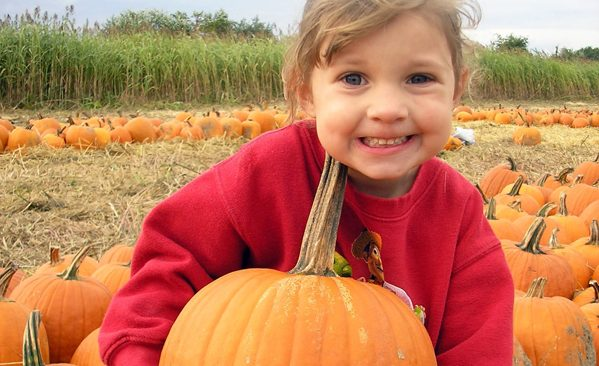 The Best Pumpkin Farms in Chicagoland