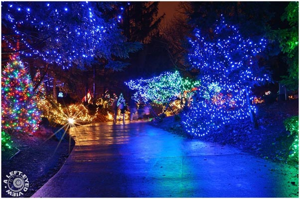 Chicagoland Christmas Holiday Light Displays Family viewing