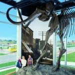 Kenosha Public Museum mammoth