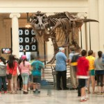Chicago Museums Week 2015