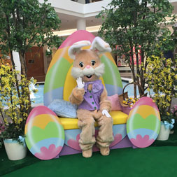 Easter bunny events egg hunts 2016 oaklees family guide yorktown mall bunny photos negle Image collections