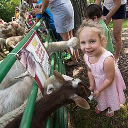 1-Country-Farm-Fair
