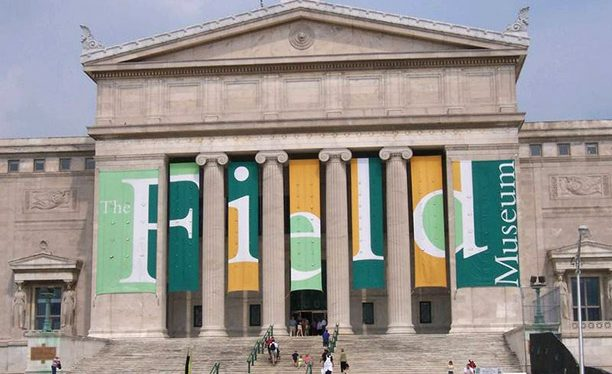 Family-Friendly Chicago Area Museums