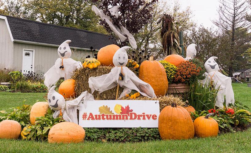 31st Annual Autumn Drive is a Fall Festival
