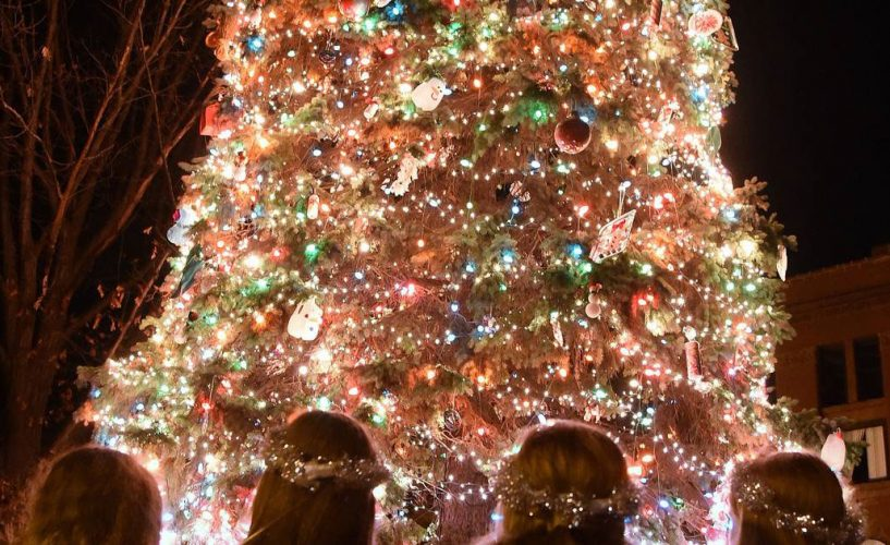 Tree Lighting in Chicago Suburbs 2019
